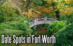 Top 9 Date Spots in Fort Worth