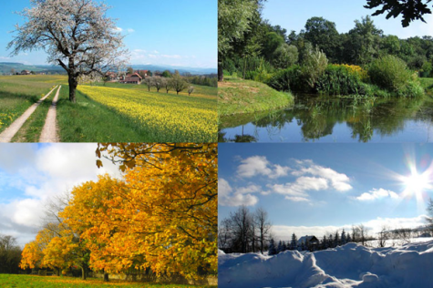 Things You Should Know About the Seasons
