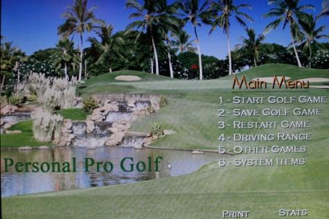 Golf Simulator Up To Par