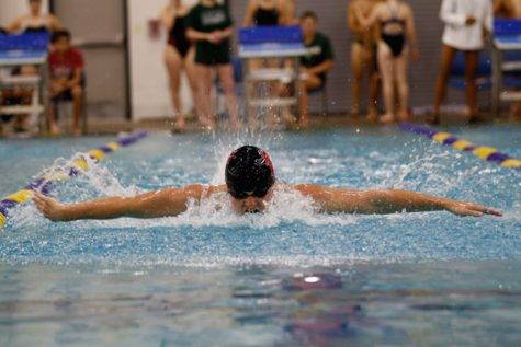Swim and Dive Paddle Past Regionals