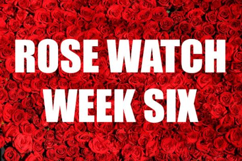 Rose Watch: Week Six