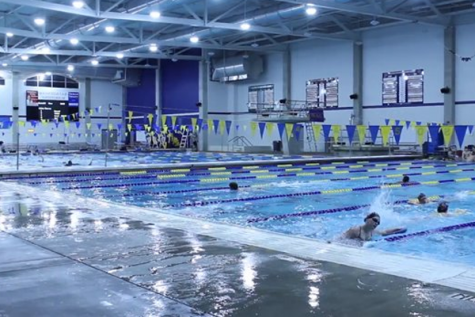 LBTV: Just Keep Swimming