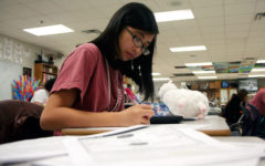 Tiffany Vo, 12, studies practice problems in the Academic Decathlon class. Students in Academic Decathlon practice multiple choice tests during fifth period to get ready for competition. (Gage Mitchell photo)