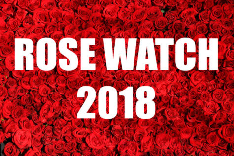 Rose Watch 2018: Arie's Finale