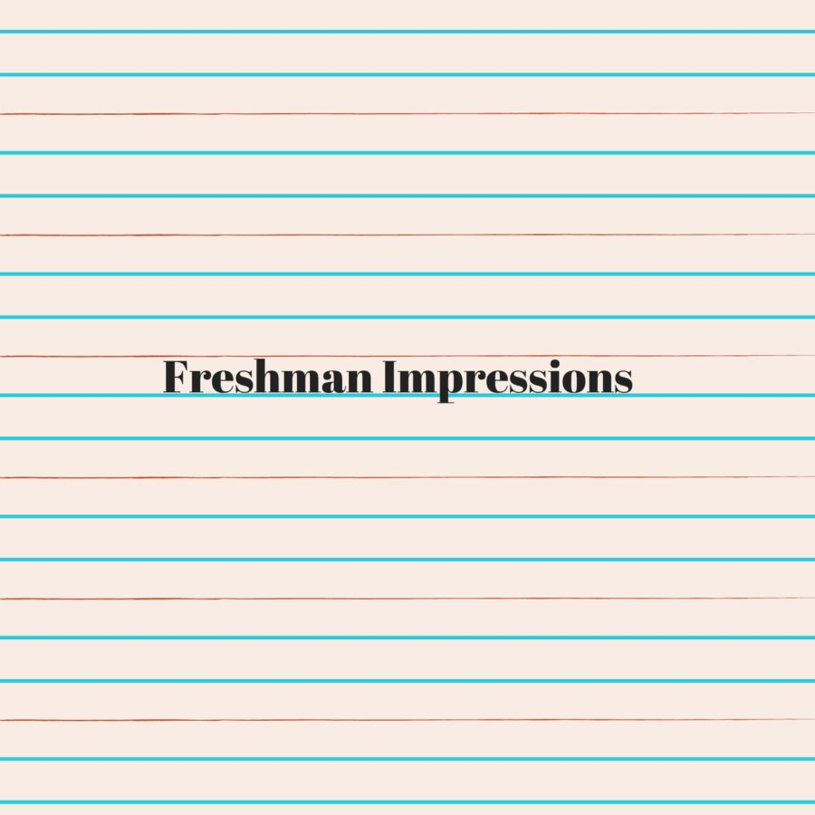 Freshman Impressions of High School